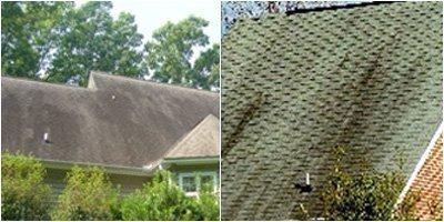 Stain Remover For Roof Shingles Removes Algae Amp Mildew